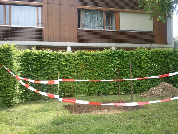 Bild des Monats: Herr Kilian hat sich direkt vor der neuen Krankenstation selbst ein Grab gegraben.